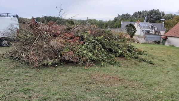 Travaux d'élagage à Saint Laurent Nouan (41220) : fin de chantier