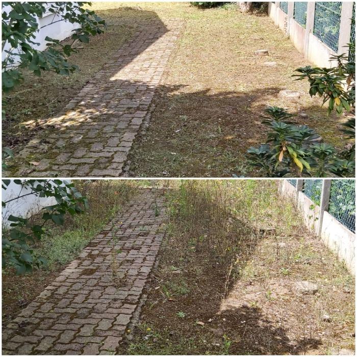 chantier rafraîchissement de jardin à Beaugency